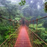 The Top 10 Things to do in Monteverde Costa Rica