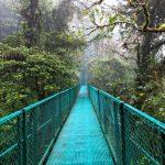 Principales Actividades en Monteverde Costa Rica
