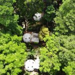 Top Glamping Spots in Costa Rica