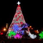 Best Christmas and New Year's Vacation Packages 2021